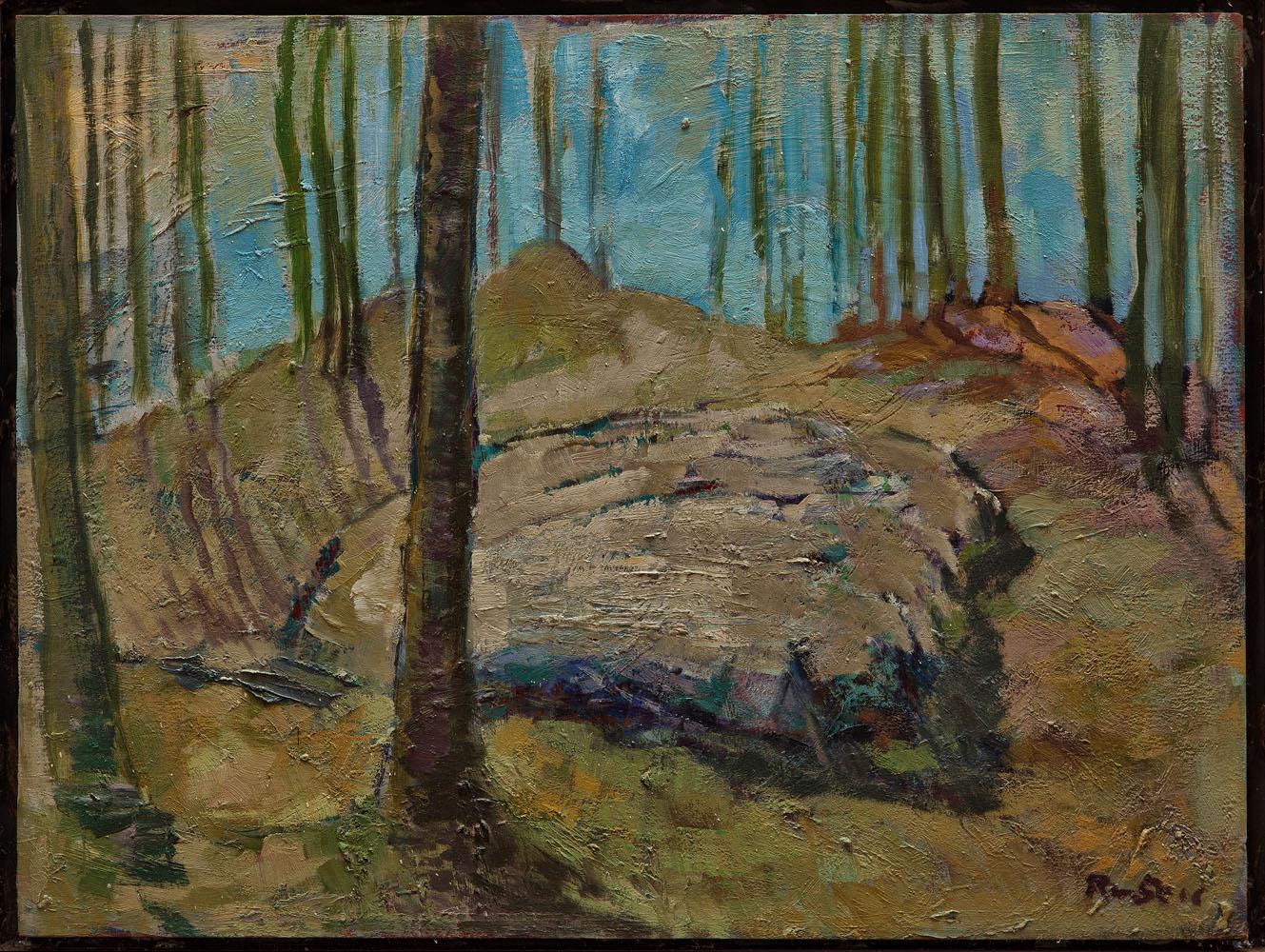 un posto nella foresta'' olio su tela 90x70 cm 2008